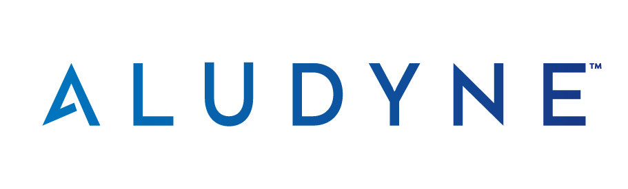 Aludyne – Finance, Quality, Purchasing & IT