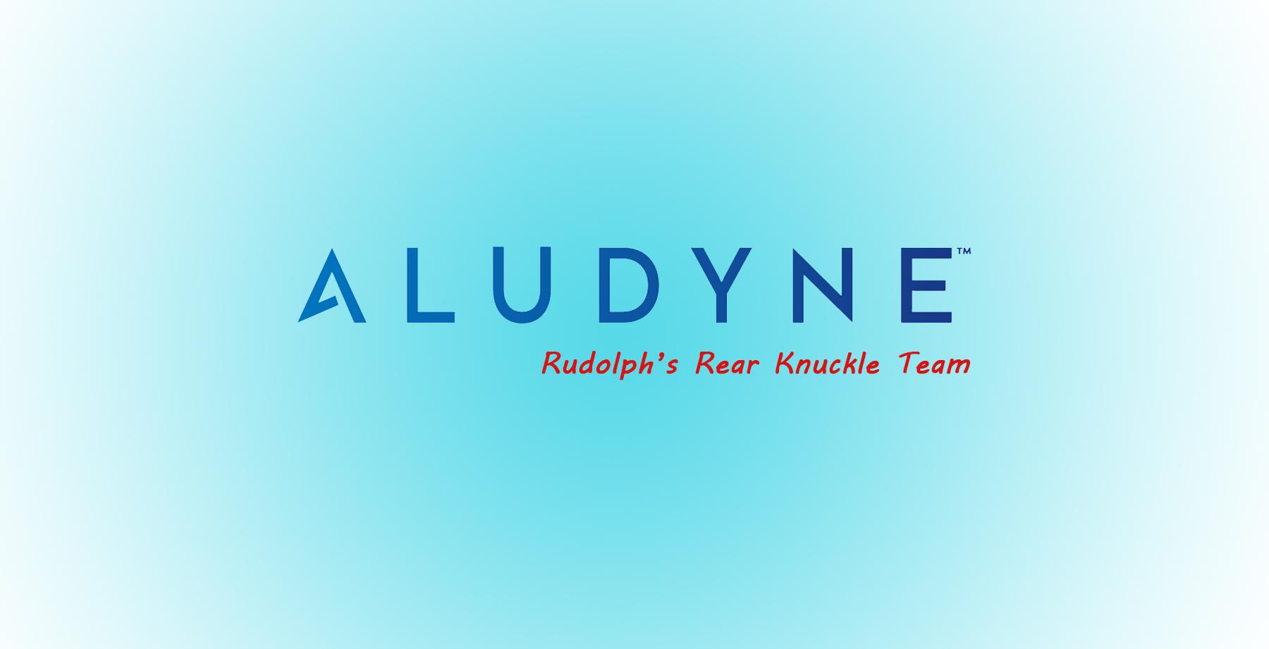 Aludyne – HR/SHE, Sales, AMS Ops & Lab